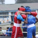 RMS Chail Inter-House Boxing Championship - 2015